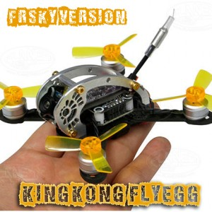 KINGKONG Flyegg 100 with Frsky rx FPV Racer Mini Brushless Drone Quadcopter BNF Version